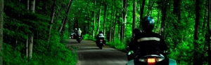 group of riders in the forest